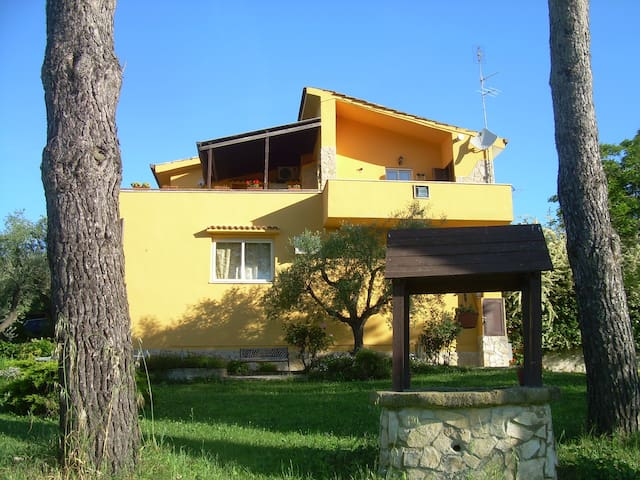 Country House a 30 min da S. Pietro - Roma - Bed & Breakfast