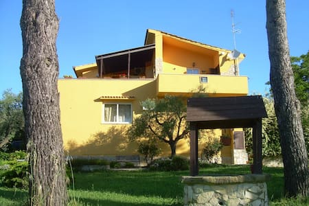Country House a 30 min da S. Pietro - Roma