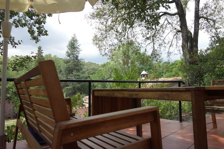 Aussicht von der Terrasse / view from main terace