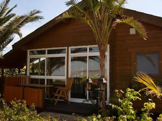 Well equipped wooden house with terrace and beautiful garden