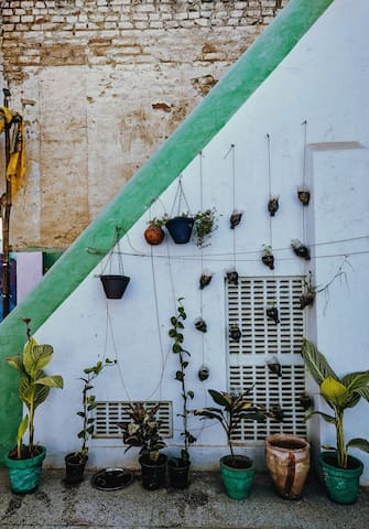 Our hanging garden (accompanied by our rooftop garden and compost)