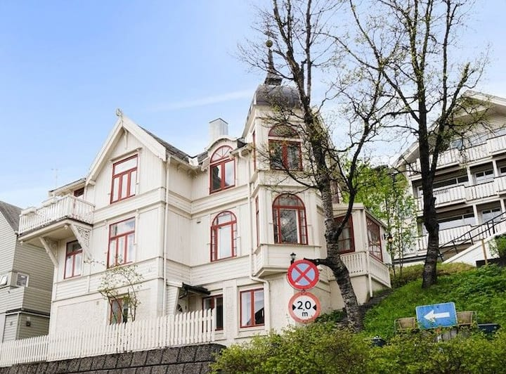 Arctic fairytale house in city center