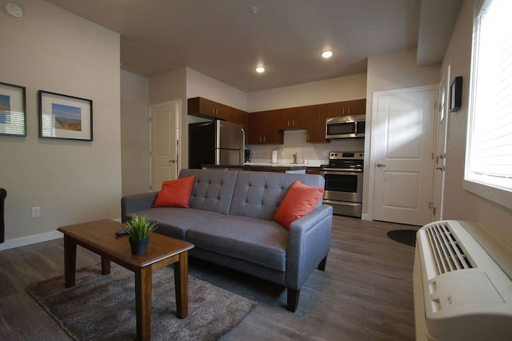 Comfortable apartment close to downtown