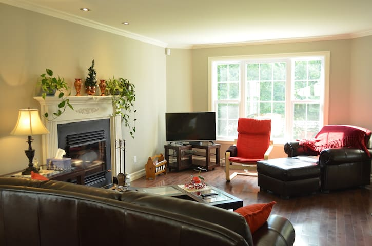 Common area with full access of high speed internet WiFi and Apple TV. Wooden fire place, lots of sun and garden view.