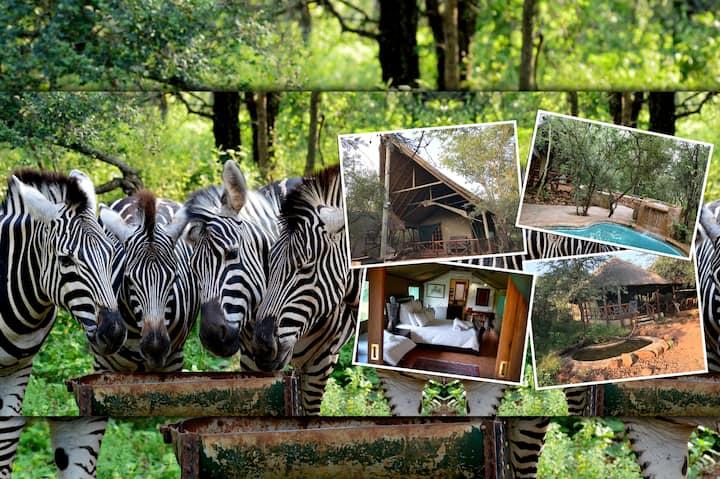 Maerua Luxury Safari Tents