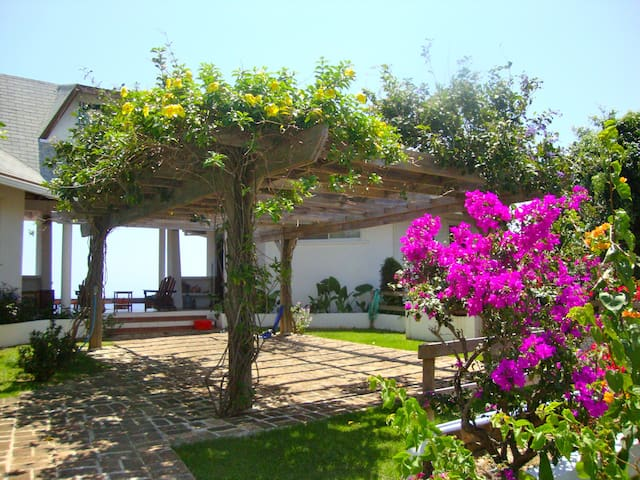 Private Home w/ Stunning Ocean View - West Bay - Huis