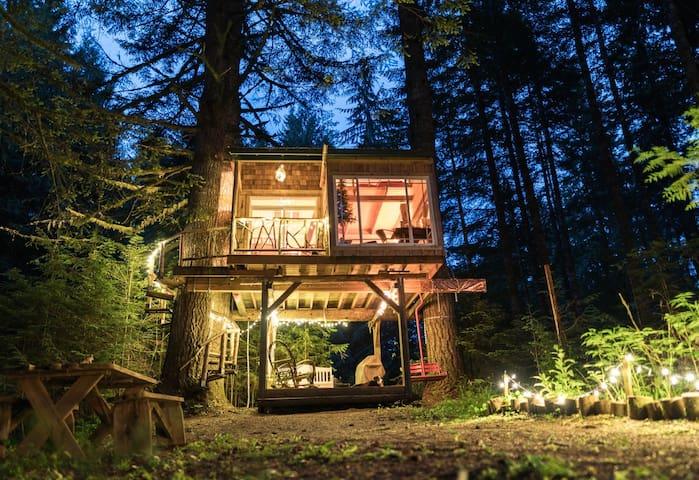 Beautiful, Magical, Treehouse