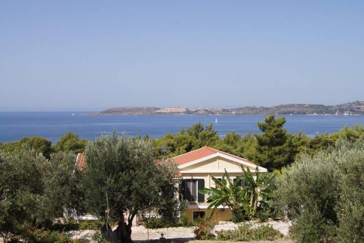 Seapine Studios - Argostolion - Apartment