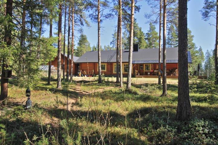 Puolen hehtaarin metsä - Oulu - Haus
