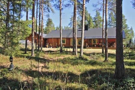 Puolen hehtaarin metsä - Oulu - Talo