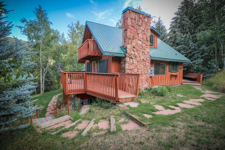 Cozy Mountain Cabin 3 Bedroom Great Location