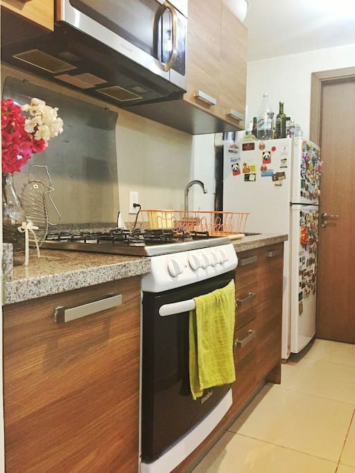 Fully equiped kitchen: fridge, microwave, stove, blender and cooking oven. We have a washing/drying machine as well.