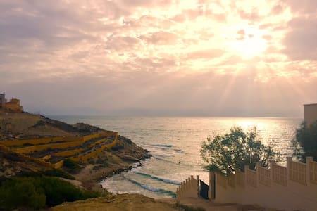 INDICO - Alicante