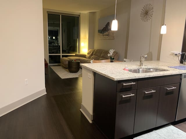 Nouvelle luxury high-rise in Tysons NEAR metro/DC!