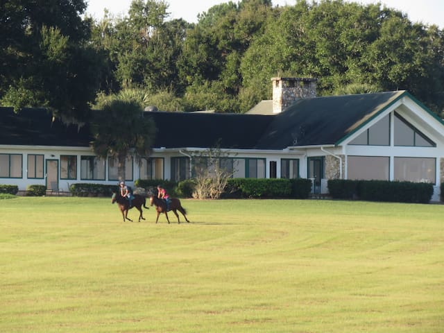 TRIPPLE CROWN HORSE FARM! (2 of 2) - Ocala - Villa