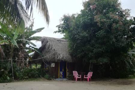 Cultural Cabana in Hopkins