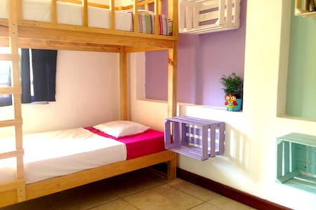 1 Bed (A1) in 4 bed Dorm with pool, close to beach - Puerto Escondido - Herberge