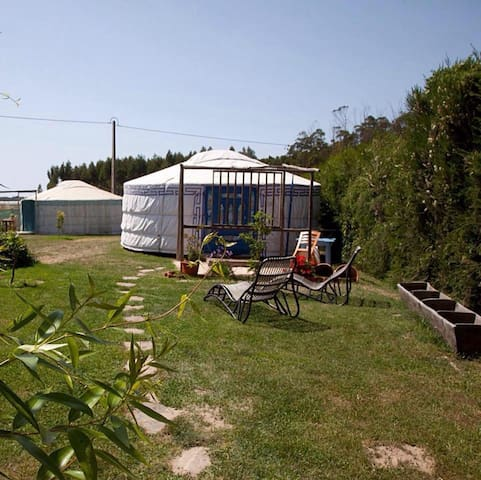 Quintal Yurts - Green Yurt