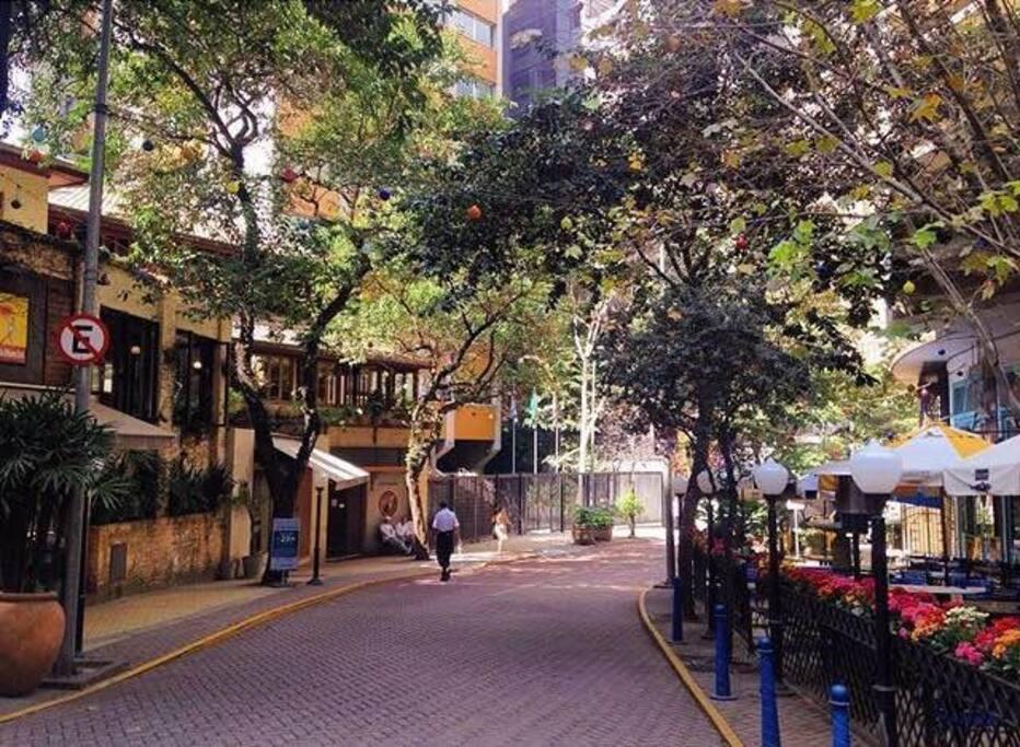 Nice apartment located in charming Avanhandava street