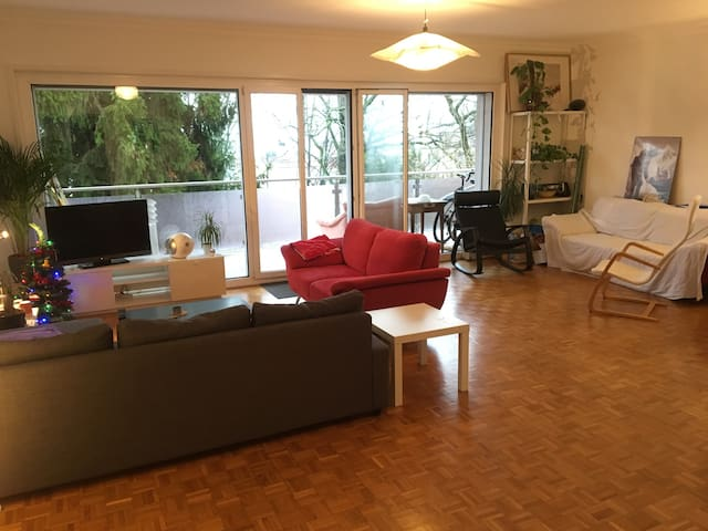 Room Rental in Big Shared Apt. Downtown Lausanne