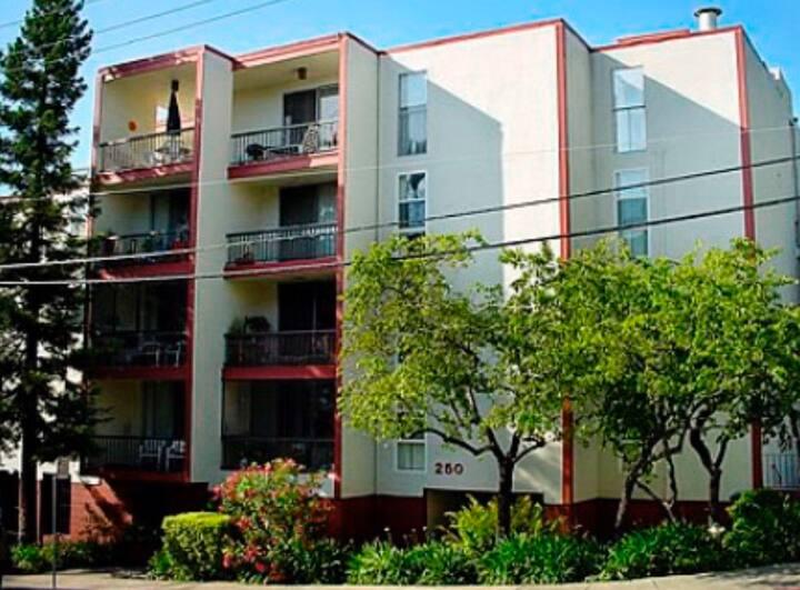 Vibrant Oakland Rockridge District Condo