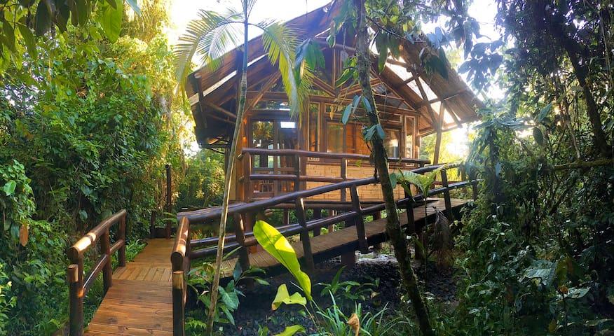 Bangalô Surucuá - Bambu