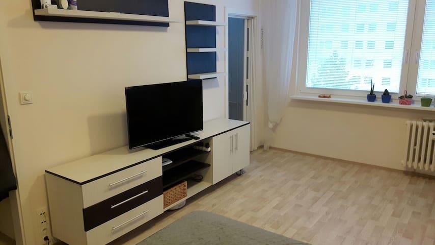 Malý byt s velkými možnostmi - Praga - Apartament