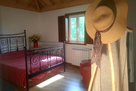 Bedroom in organic farm Douro river - Souselo - Bed & Breakfast