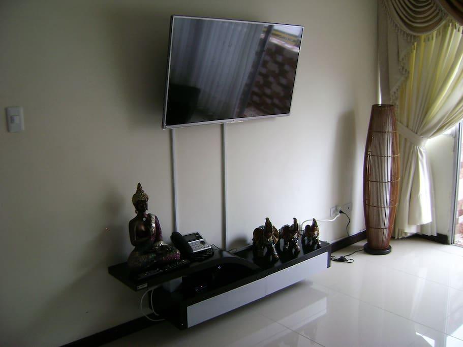 TV plasma