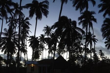 Zanzi Beach Cottage -Seaview Double - Hus