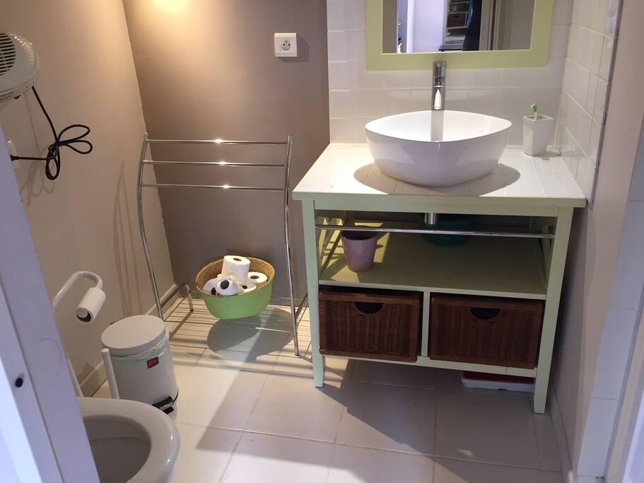 Salle de bains douche WC