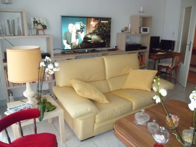 appartement à louer pour le festival de la BD