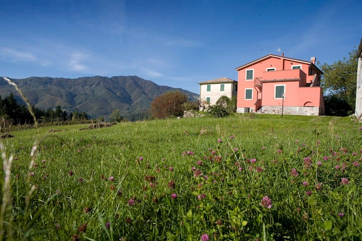 Casa per vacanze  Poggio Temossi - Temossi - Apartmen