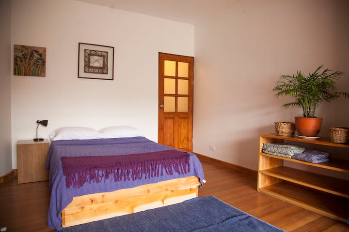 Studio Flat in Barrio Escalante