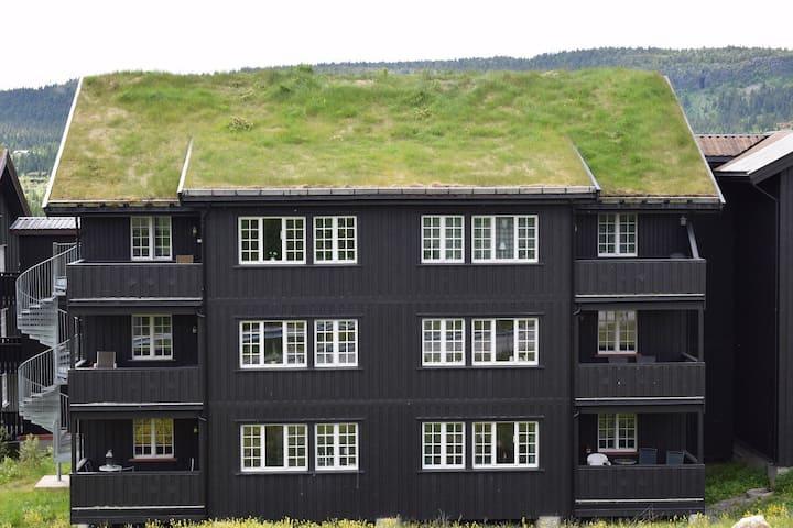 Familievennlig leilighet med 6 senger på Skeikampen