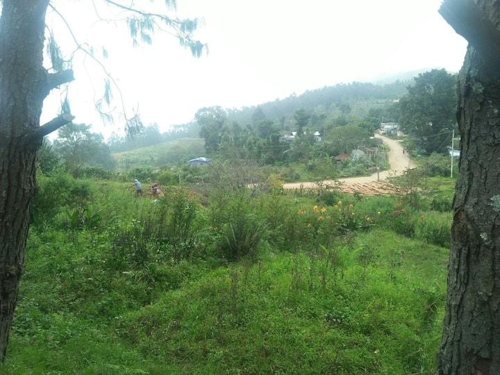 Misty Farm Stay - Paius Farm House