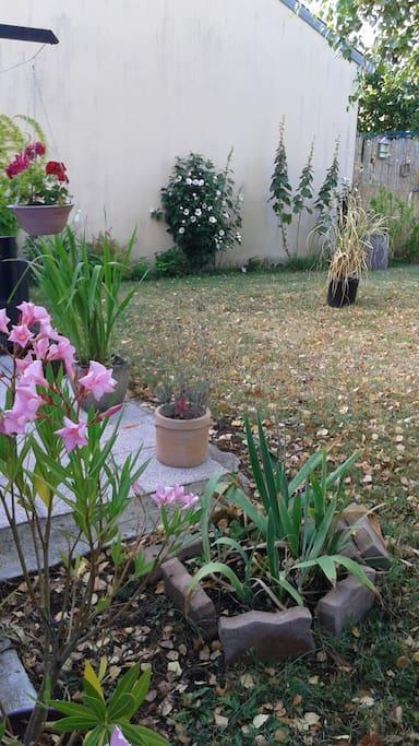 Le jardin avec terrasse et salon de jardin