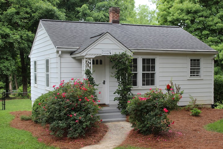 Remodeled 1 BR cottage on private acre+ lot
