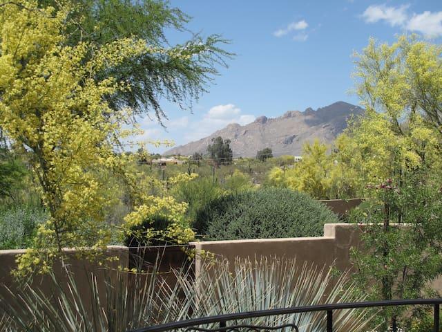 Catalina Foothills Desert Casita - Tucson - Chalet