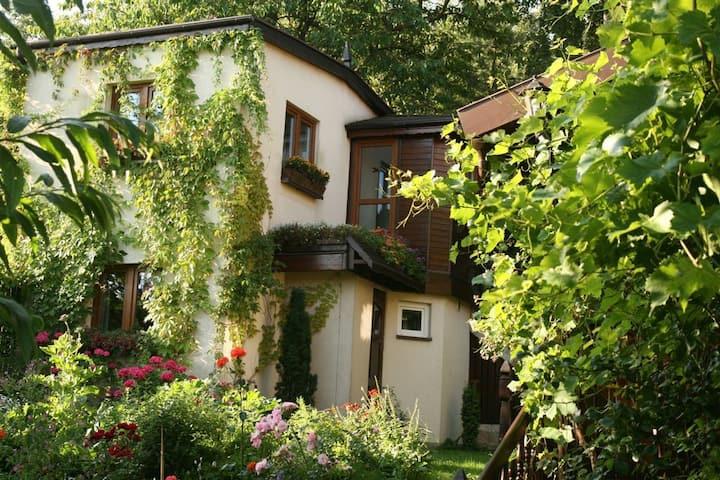 Cozy House with Fabulous Garden