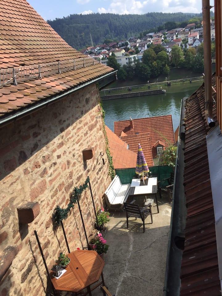 W4.Neckarblick  Natur Altstadt vor Heidelberg