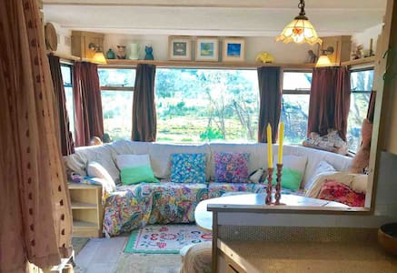 Vibrant Artists home in Co Sligo Lough Arrow