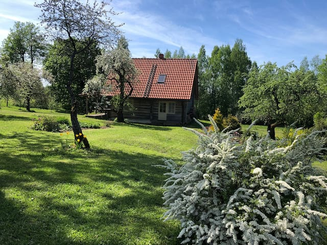 Brīvdienu māja Vidzemes laukos