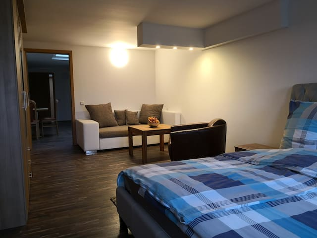 Apartment for a business trip (Kitchen incl.)