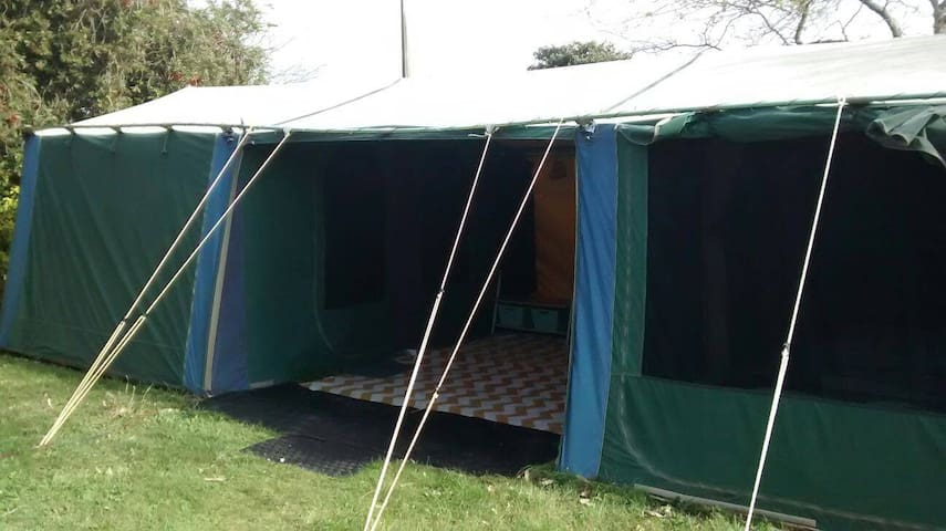 'Glamping' Homestay in Flaxmere (family tent)