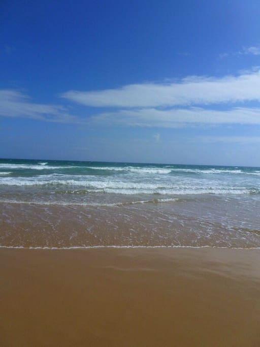 清水湾海滩