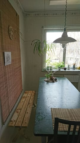 Cosy kitchen with large table