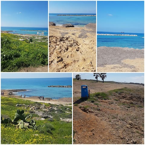 This beach is in 1 km walking distance next to lidl supermarket and Venus beach hotel