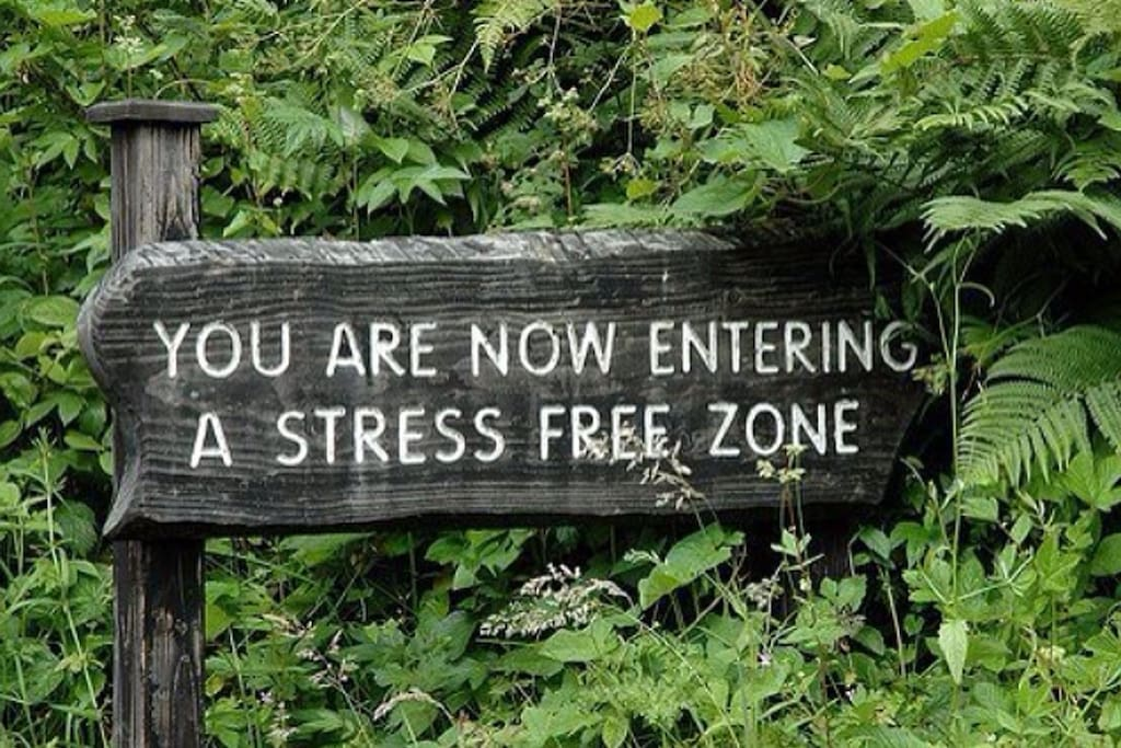 Relax and enjoy our stress FREE zone