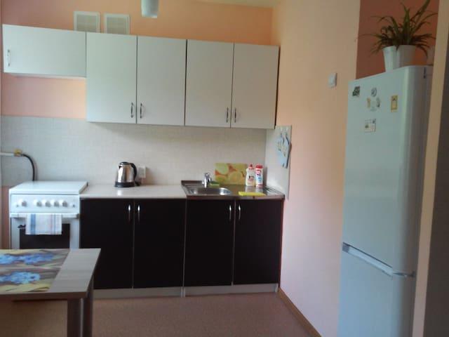 Двухкомнатная квартира в центре  Ижевска - Izhevsk - Appartement
